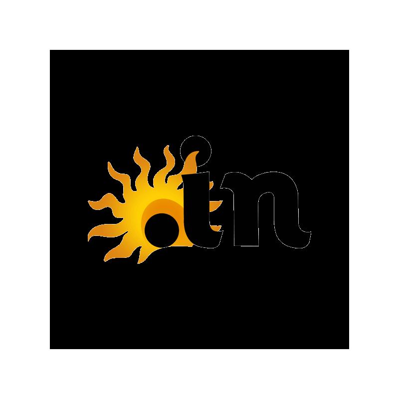 .in domain logo