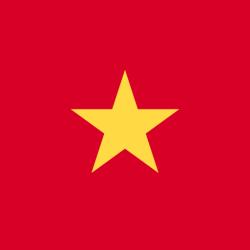 .com.vn Domain Name