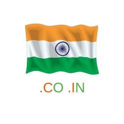 .co.in Domain Name