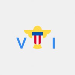 .com.vi Domain Name