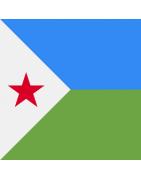 Djiboutian Domains