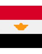 मिस्र के डोमेन