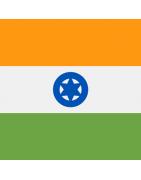 ભારતીય ડોમેન્સ