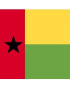 Guinea-Bissau Domains