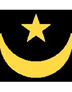 मॉरिटानियन डोमेन