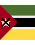 મોઝામ્બિકન ડોમેન્સ