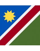 Namibian Domains
