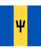 Barbados Domains