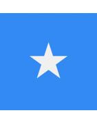 Somalian Domains