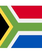 दक्षिण अफ्रीकी डोमेन