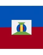 हैती डोमेन