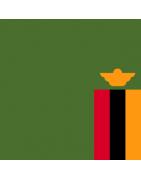 जाम्बियन डोमेन