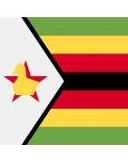 Zimbabwean Domains