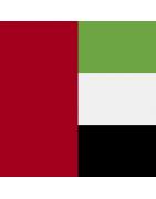 अरब अमीरात के डोमेन