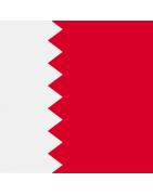 Bahraini domains
