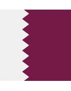 Qatari Domains