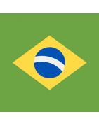 Brazilian Domains