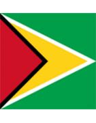 Guyanese Domains