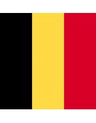 बेल्जियम डोमेन