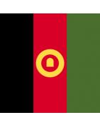 अफगान डोमेन