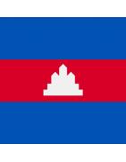 कंबोडियन डोमेन