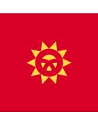 किर्गिज़स्तानी डोमेन
