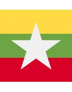 Registration and management services for Myanmar - Burmese domain names