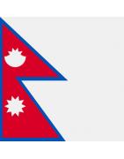 नेपाली डोमेन
