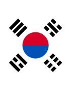 दक्षिण कोरियाई डोमेन